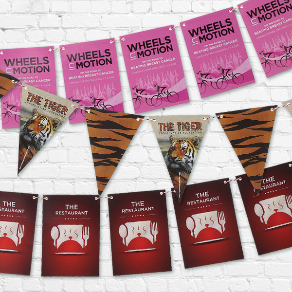 Indoor Bunting Kit